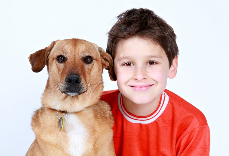 """Can We Keep Him?"" What to do When the Kids Want a Family Pet"