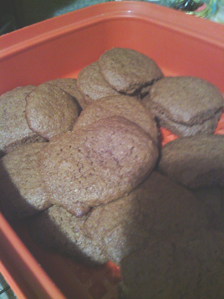 Molasses Christmas Cookies