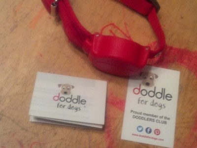 Doddle for Dogs Combining Collar and Leash Giveaway