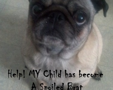 Help! My child is a Spoiled Brat