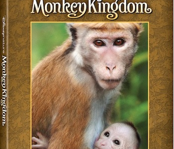 DisneyNature Monkey Kingdom on Digital HD, Disney Movies Anywhere (DMA) & Blu-ray Combo Pack
