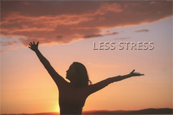 No Stress In Love