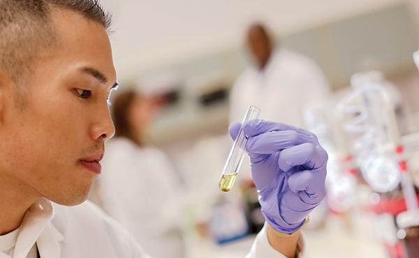 Drug Testing Importance