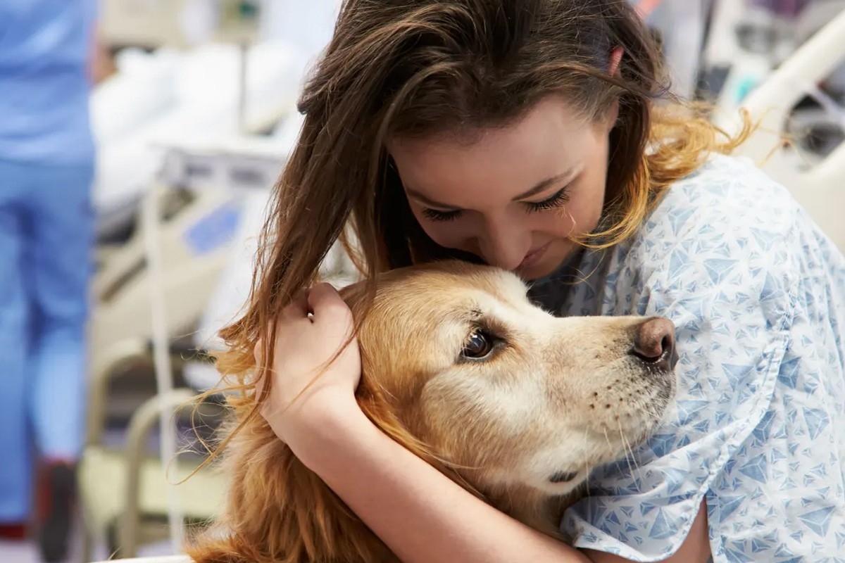 Enhancing Patient Care Through Pet Therapy