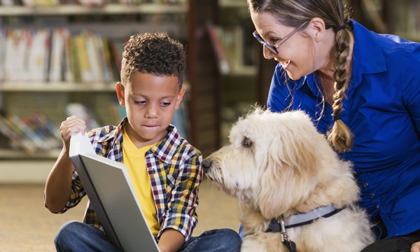 How Pet Therapy is Used in Practice